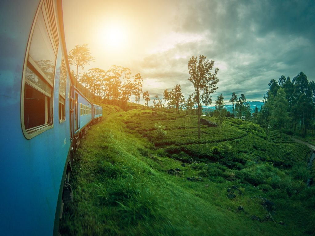 Sri Lanka to Reopen Tourism in August with Restrictions: Official News By Volunteering Solutions